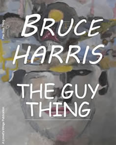 book cover of 'the guy thing'