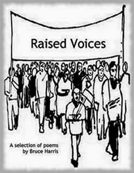 book cover of 'raised voices'